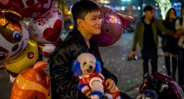 25 imáganes de cómo se recibió el Año Nuevo Chino del Perro en Nueva York