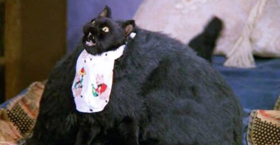 El gato gordo - 1 part 5