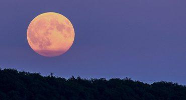 ¿Que no viste la Superluna Azul de Sangre? No te preocupes, aquí tenemos las imágenes más impresionantes