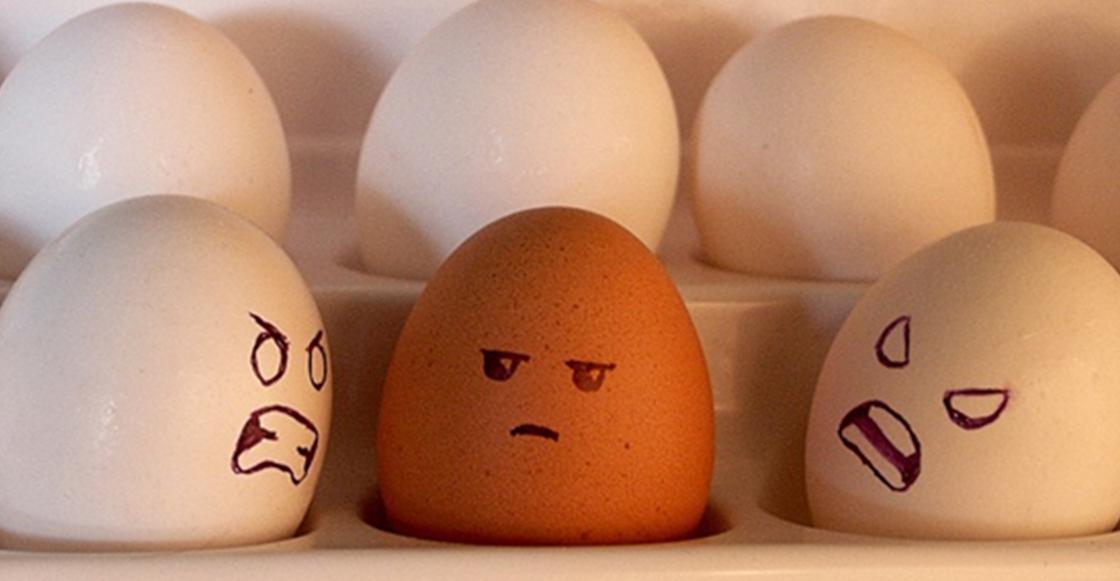 ¿Existe alguna diferencia entre el huevo rojo y el blanco?