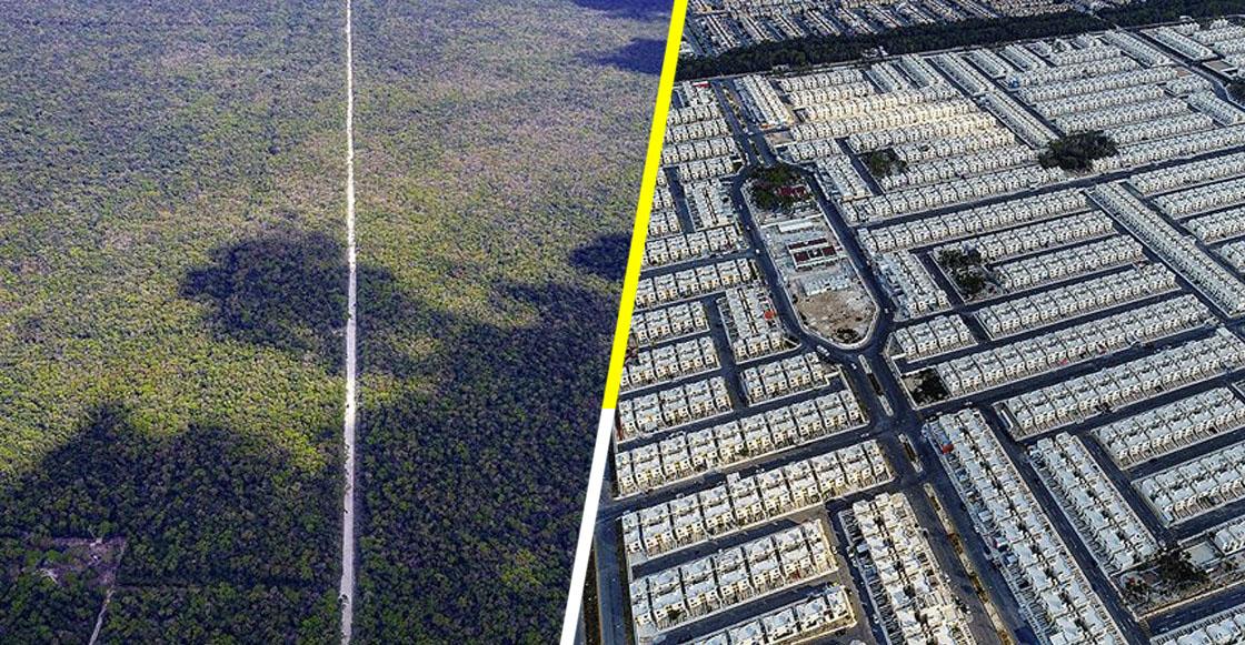Las impresionantes fotos que muestran la devastación ecológica en Playa del Carmen