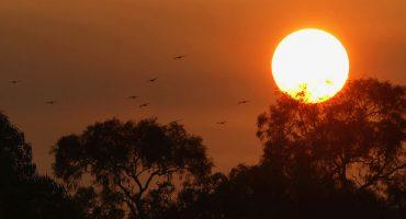 ¡Se avecinan tormentas solares y podrían provocar fallas en las telecomunicaciones!