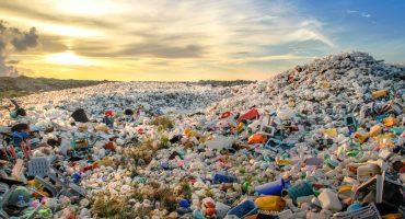 Accidentalmente descubren encima capaz de comerse botellas de plástico