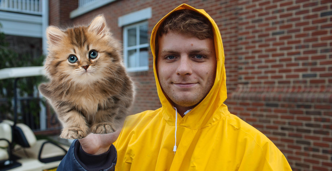 Mac Demarco y su jazz gatuno