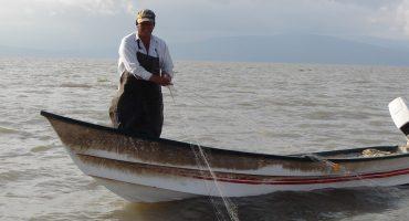 #MalaCosecha: el millonario desvío pesquero de Sagarpa