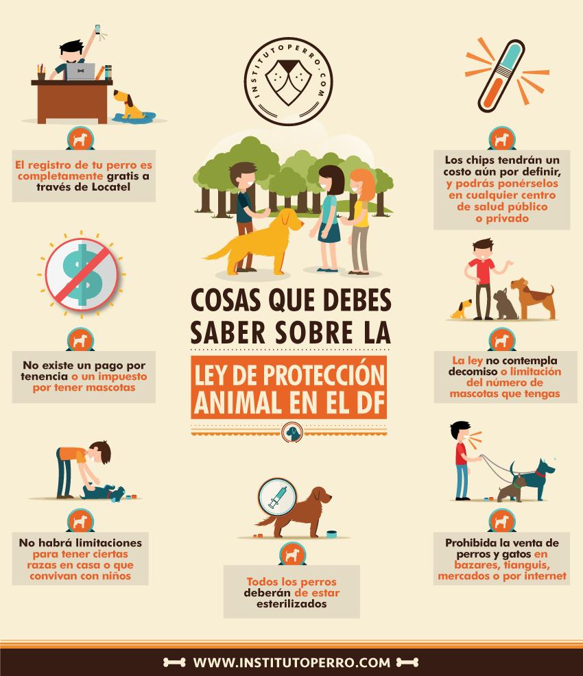 Ley de Protección Animal en el DF