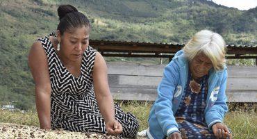 Una mujer zapoteca ganó un concurso de fotografía mostrando sus labores diarias