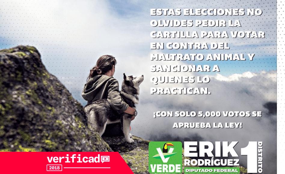 maltrato animal elecciones 2018