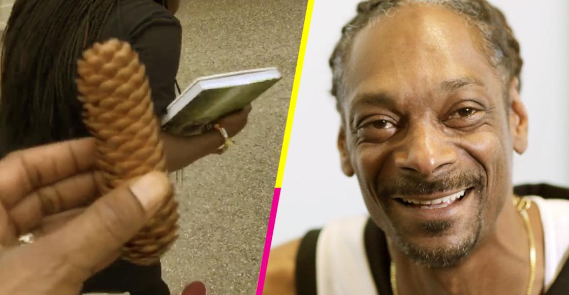 Snoop Dogg descubrió un cono de pino...
