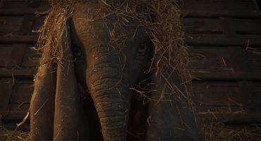 Disney y Tim Burton liberaron el primer teaser tráiler del live action de 'Dumbo'