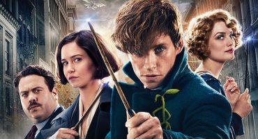 ¡J.K. Rowling ya está escribiendo la tercera parte de Fantastic Beasts!