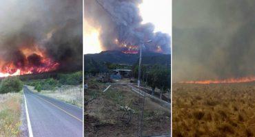 Impresionantes imágenes de un incendio forestal en Saltillo