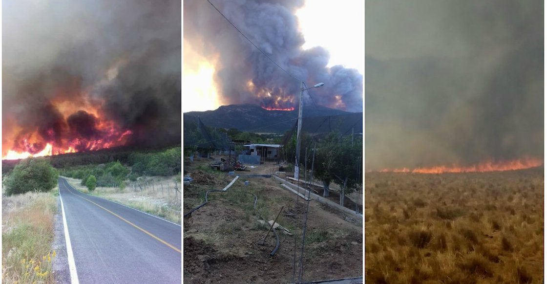 incendio-forestal-saltillo-destacada