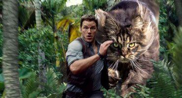 Jurassic Cats: Alguien remplazó dinosaurios por gatitos en imágenes de Jurassic World