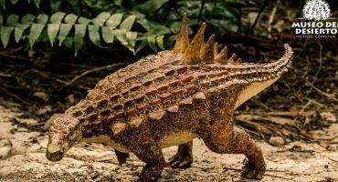 Descubren una nueva especie de dinosaurio en Coahuila... ¡y no es del PRI!