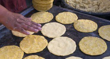 ¡Ya era hora! En la UNAM crearon una tortilla contra la obesidad