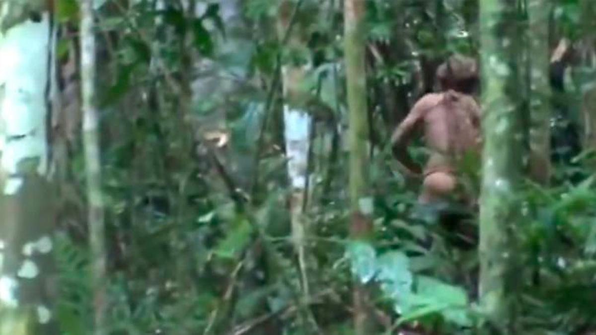 último sobreviviente del amazonas