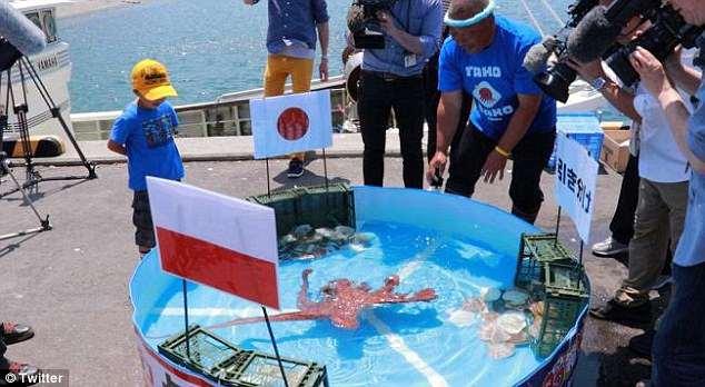 De oráculo a ceviche: El pulpo que predijo los partidos de Japón terminó en un plato