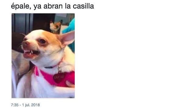 Porque no perdonan nada: Así los memes de las elecciones 2018