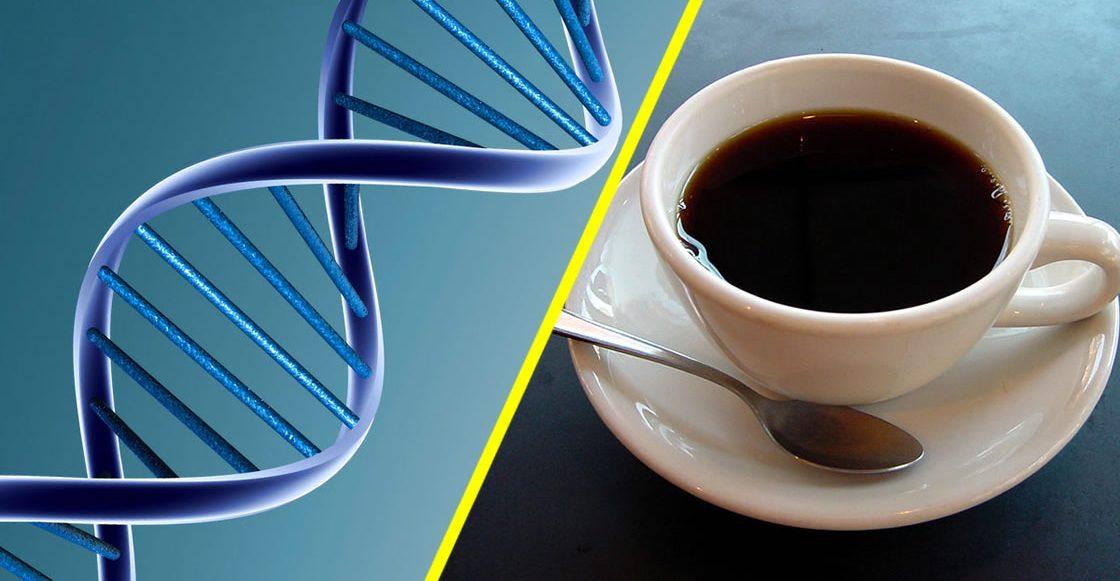 Beber café aumenta la esperanza de vida sin importar tu ADN