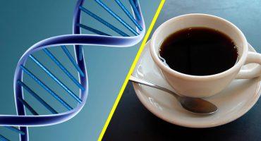 Tomar café aumenta la esperanza de vida por 10 años, sin importar tu ADN