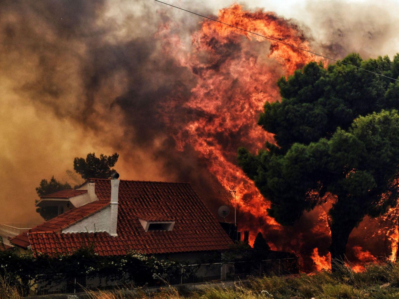 incendio-grecia-24-julio-02