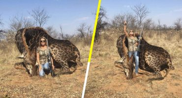 La cazadora Tess Thompson mató a una jirafa negra y está causando indignación 