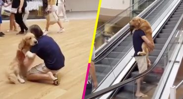 Awww nivel: Carga a su perrito porque le daban miedo las escaleras eléctricas