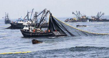 ¿Por qué le prohibieron a EEUU importar pescados y mariscos mexicanos?