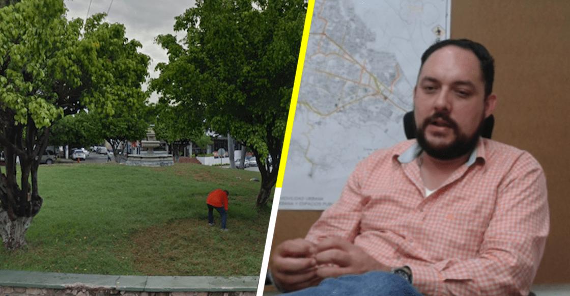 Tsss Talan árboles en rotonda de Chiapas porque 'van contra la estética'