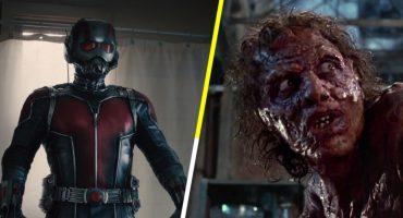 Checa este mashup entre 'Ant-Man' y 'La mosca' de David Cronenberg