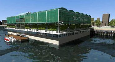Así es la primera granja flotante en el mundo