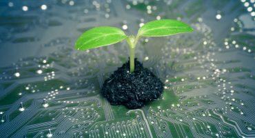 Habemus licenciatura en Ingeniería Ambiental en la UNAM 👏🏻