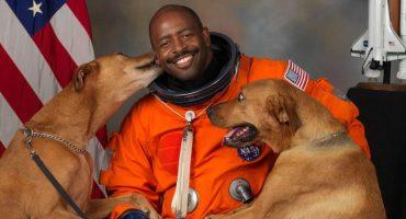 Perritos en el espacio