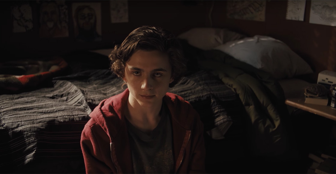 Checa el nuevo tráiler de 'Beautiful Boy' con Timothée Chalamet y Steve Carell 😭