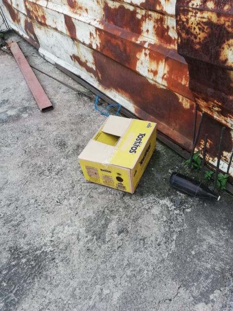 Abandonan a recién nacido en una caja de cartón en la Miguel Hidalgo