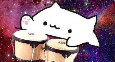 El origen de 'Bongo Cat', el gatito que es la sensación del internet