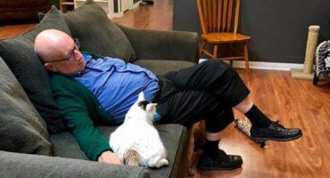 ¡Este hombre ha recaudado 30 mil dólares sólo por dormir con gatitos! 🙀