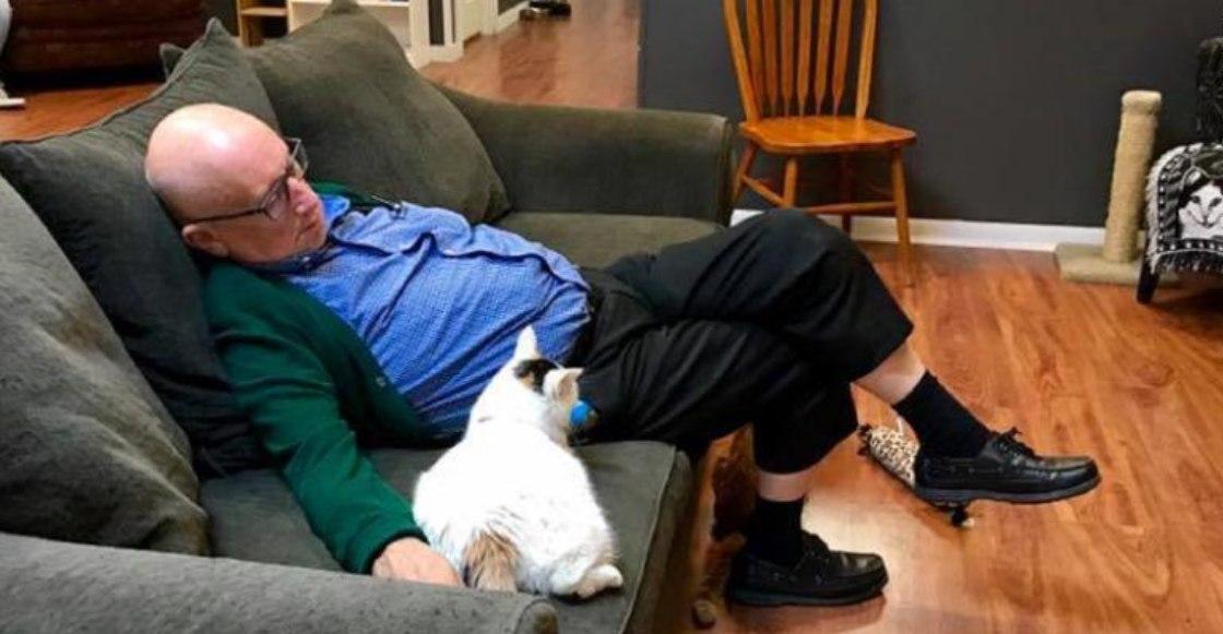 ¡Este hombre ha recaudado 30 mil dólares sólo por dormir con gatitos!