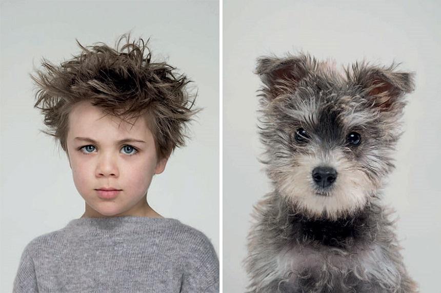 Perritos que se parecen a sus dueños