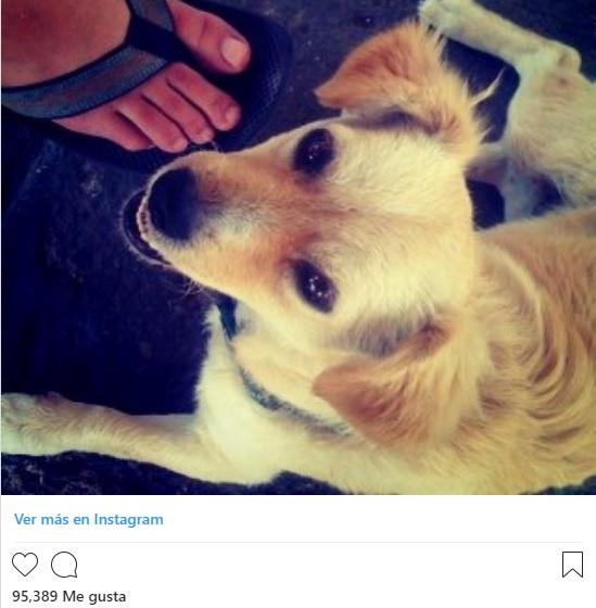 Primer Foto subida Instagram