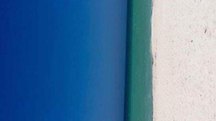Puerta o playa - Ilusión óptica