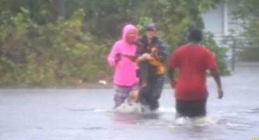 Reportera interrumpe transmisión en vivo para rescatar a un perrito