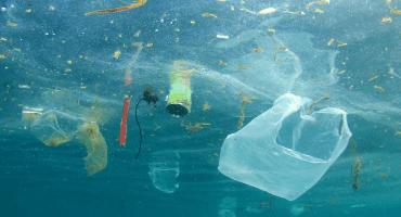 Y el Europarlamento aprueba prohibición de plásticos de un solo uso para 2021