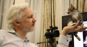 Limpia tu cuarto, cuida a tu gato y cierra el pico: la última oportunidad de Assange