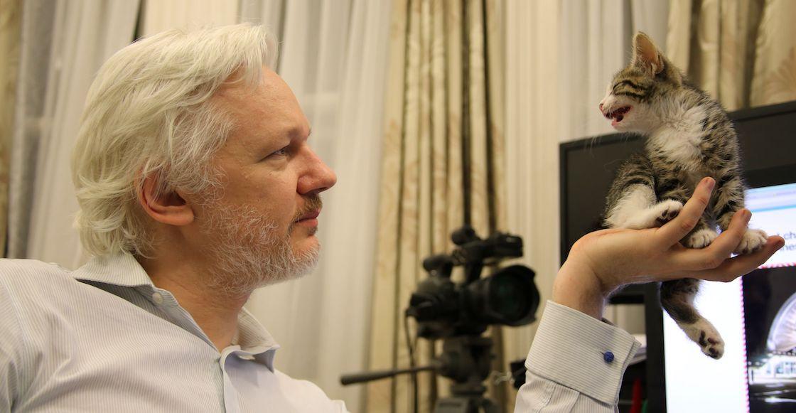Ecuador restableció parcialmente las comunicaciones de Julian Assange — WikiLeaks