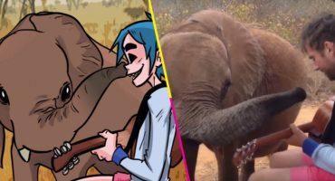 ¡NOO! Murió Mr. Tembo, el elefante que inspiró a Damon Albarn