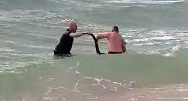 ¡Jefazos! Policías salvan a un canguro de ahogarse en el mar