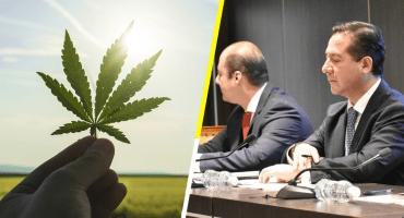 Un paso adelante: Estos son los primeros productos de Cannabis que se venderán en México