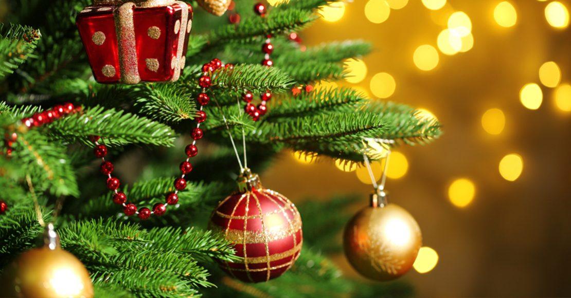 3cfc2e5a33c ¿Quieres un árbol de Navidad perfecto  Solo tienes que usar esta fórmula  matemática